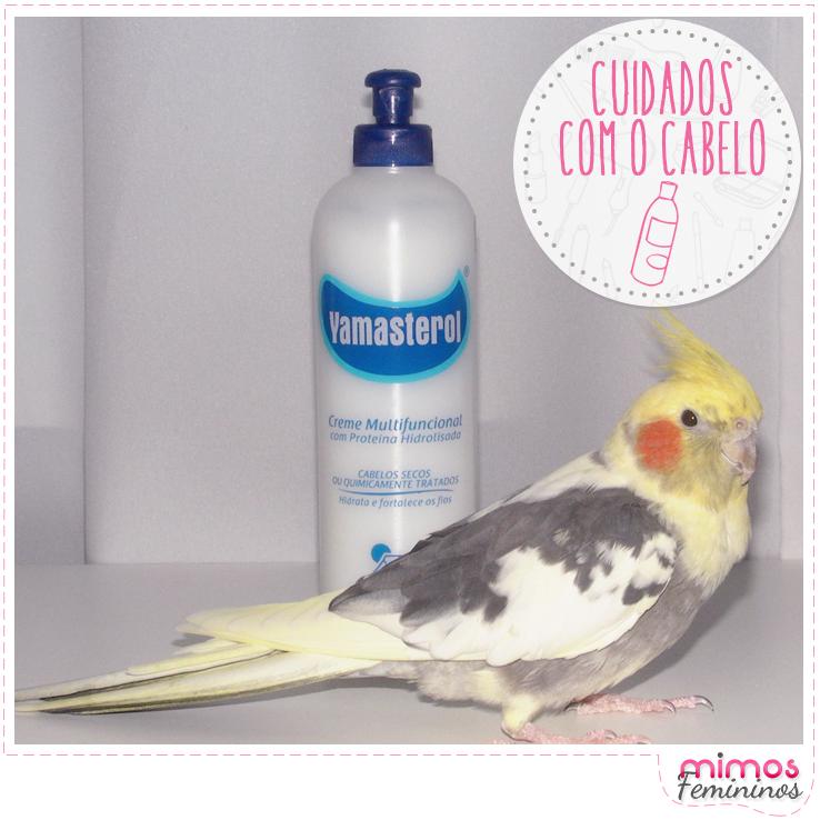 Mimos_post_cuidadosccabelo_1